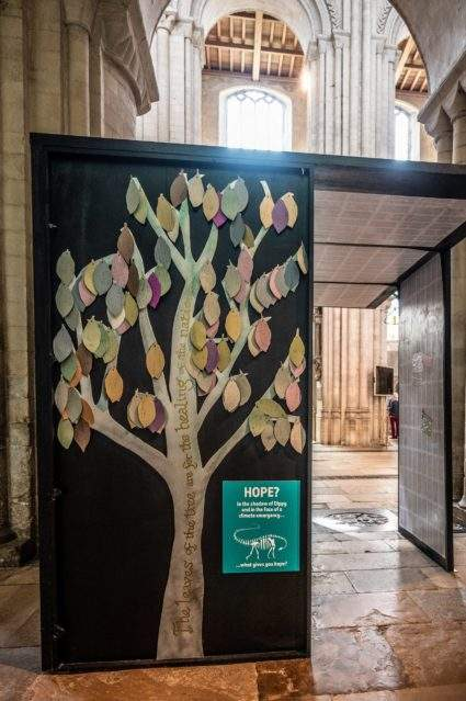 Healing tree in the face of a climate emergency. Photograph: Norwich Cathedral/Bill Smith